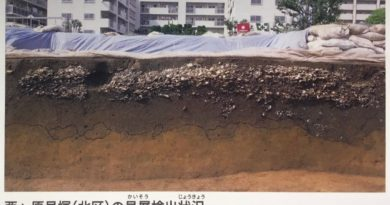 What shell mounds tell us about the Jomon diet and way of life